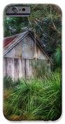 Timber Shack IPhone Case by Kaye Menner