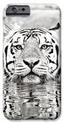 Top Cat IPhone Case by Scott Pellegrin