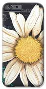 Tranquil Daisy 2 IPhone Case by Debbie DeWitt