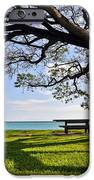 Tree Canopy IPhone Case by Gina Savage