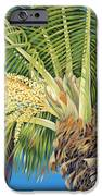 Tropical Bloom IPhone Case by Danielle  Perry