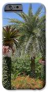 Tropical Garden IPhone Case by Kim Hojnacki