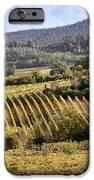 Tuscan Valley IPhone Case by Dave Bowman