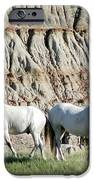 Two Wild White Stallions IPhone Case by Sabrina L Ryan