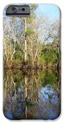 Ultimate Reflection IPhone Case by Debra Forand