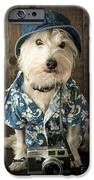 Vacation Dog IPhone Case by Edward Fielding
