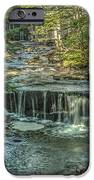 Vaughan Woods Stream IPhone Case by Jane Luxton