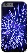 Violet Display IPhone Case by Katherine Forrester
