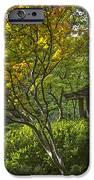 Watercolor Gardens IPhone Case by Joan Carroll