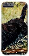 Water's Edge IPhone Case by Molly Poole