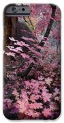 West Fork Fall Colors IPhone Case by Dave Dilli