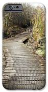 Wetland Walk IPhone Case by Les Cunliffe