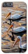 White Pelicans  In Golden Water IPhone Case by Robert Bales