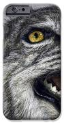 Wildcat Ferocity IPhone Case by Daniel Hagerman