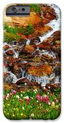 Wildflower Waterfall IPhone Case by Tranquil Light  Photography