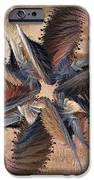 Winds Of Change IPhone Case by Deborah Benoit