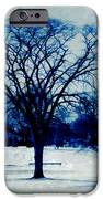 Winter Blues IPhone Case by Shawna Rowe