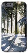 Winter Landscape IPhone Case by Aged Pixel