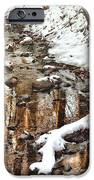 Winter - Natures Harmony IPhone Case by Mike Savad