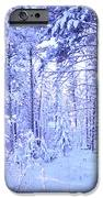 Winter Solace IPhone Case by Tara Turner
