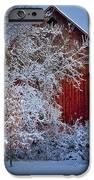 Winter Warmth  IPhone Case by Jeff Klingler