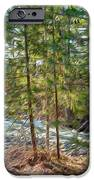 Wolf Creek Stretching Out IPhone Case by Omaste Witkowski