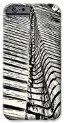 Wooden Sculpture In Palm House Kew Gardens IPhone Case by Lenny Carter