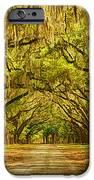 Wormsloe Plantation Oaks IPhone Case by Priscilla Burgers