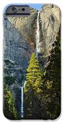 Yosemite Falls With Late Afternoon Light In Yosemite National Park. IPhone Case by Jamie Pham