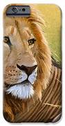 Young Lion IPhone Case by Aaron Blaise