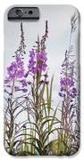 Yukon State Flower IPhone Case by Priska Wettstein
