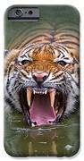 Angry Tiger IPhone Case by Louise Heusinkveld