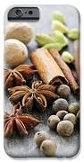 Assorted Spices IPhone Case by Elena Elisseeva