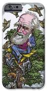 Charles Darwin In His Evolutionary Tree IPhone Case by Bill Sanderson