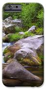 Creek IPhone Case by Carlos Caetano