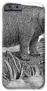 Hippopotamus IPhone Case by Granger
