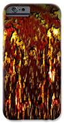 Lava And Brimstone IPhone Case by Christopher Gaston