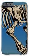 Megatherium Extinct Ground Sloth IPhone Case by Science Source