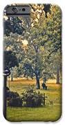 Morning Graze IPhone Case by Doug Kreuger