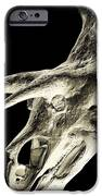 Triceratops Dinosaur Skull IPhone Case by Smithsonian Institute