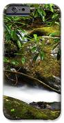 Rhododendron And Waterfall IPhone Case by Thomas R Fletcher