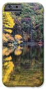 A Bright Spot IPhone Case by JC Findley