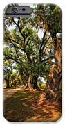 A Southern Stroll IPhone Case by Steve Harrington