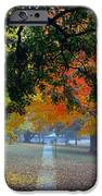 Autumn Canopy IPhone Case by Lisa Phillips