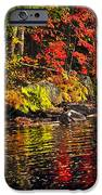 Autumn Forest And River Landscape IPhone Case by Elena Elisseeva