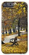 Autumn Park In Toronto IPhone Case by Elena Elisseeva