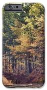 Autumn Railroad IPhone Case by Douglas Barnard