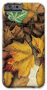Autumn Splendor IPhone Case by JQ Licensing
