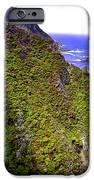 Big Sur IIi IPhone Case by Ellen Heaverlo