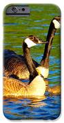 Canada Geese Family IPhone Case by Paul Ge